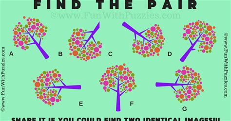 Test your Brain Picture Puzzle with Answer-Brain Teasers